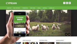 cyprian-screenshot