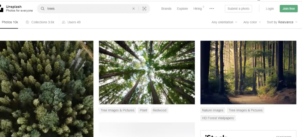 Examples of images on Unsplash